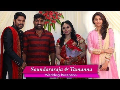 Actor Soundararaja & Tamanna Wedding Reception | Marriage Function Photos