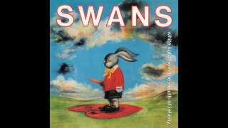 Swans - Will We Survive