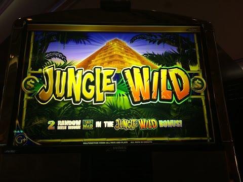 Jungle Wild Slot Machine Bonus