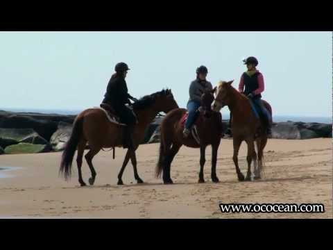 Opening Day of Horseback Riding  @ The Inlet & Beach - Ocean City, MD