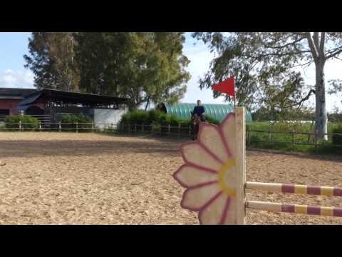 Video Shock Cavallo Salta Uomo Sdraiato video