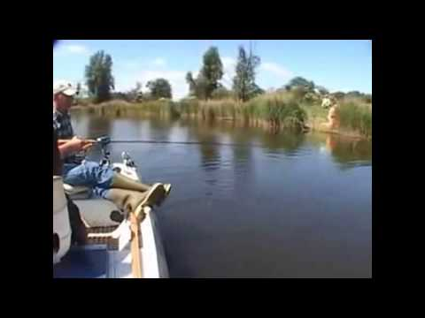 самые красивые моменты рыбалки