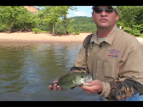 MidWest Outdoors - Larry's Illowa Marine fishing on the Upper Mississippi