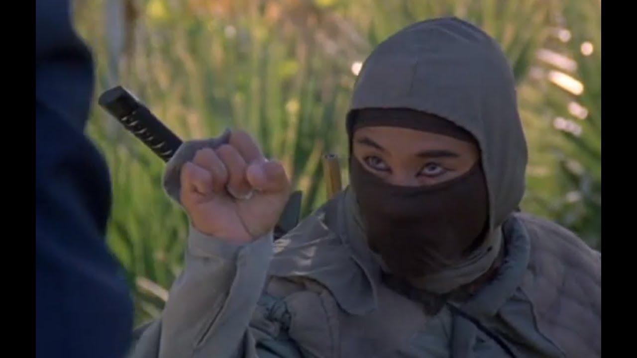 Hummmmm glad ninja iii the domination like air