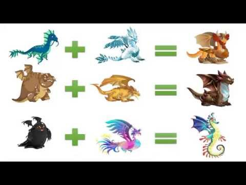 How To Breed Exclusive Dragons In Dragon City