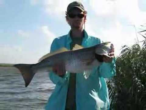 Speckled Trout and Redfish Fishing Trip in Venice, LA
