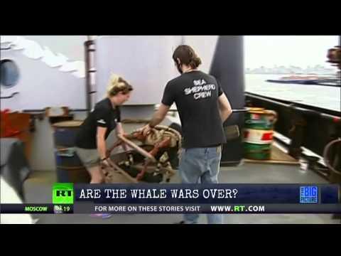 Whale War's Captain Paul Watson