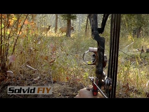 Archery Elk Hunt Close Range POV Video - Solvid FIY