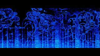 Spectrogram Video by Siti Nur Hajjar