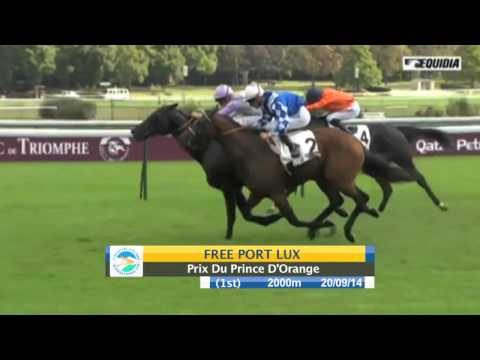 Singapore Airlines International Cup 2015 Contenders: Free Port Lux