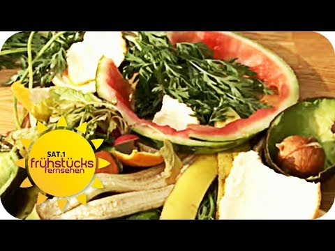 KOCHEN MIT MÜLL - Das Abfall-Menü | SAT.1 Frühstücksfernsehen | TV