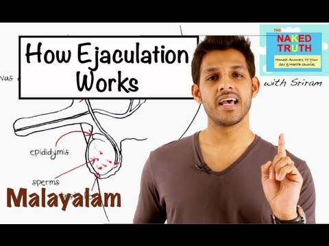 How Ejaculation Works - Malayalam video