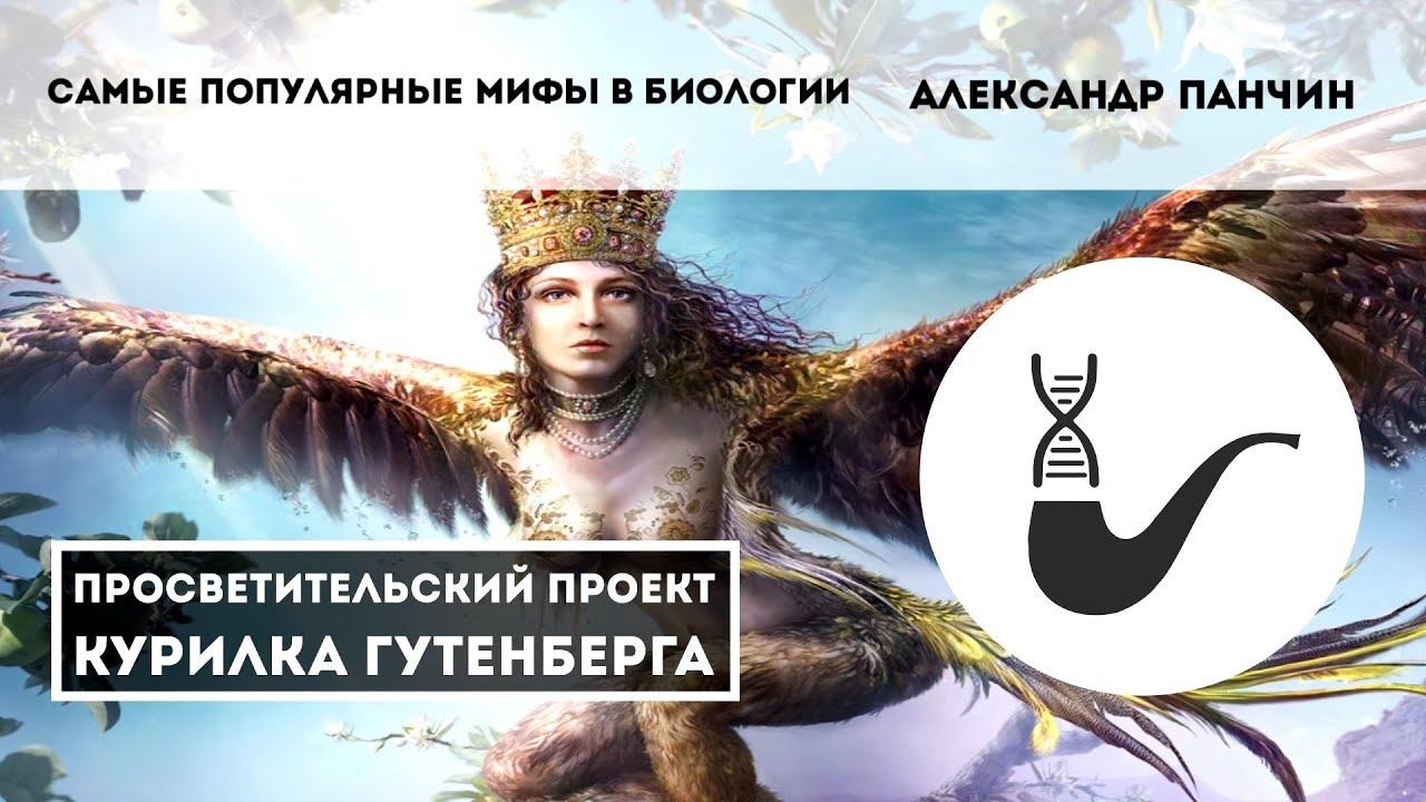 Самые популярные мифы в биологии  – Александр Панчин