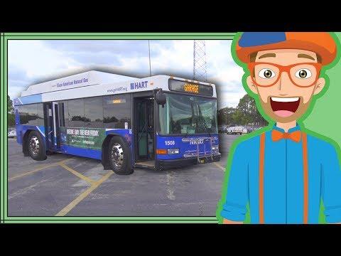 Bus Videos for Children by Blippi   Educational Videos for Kids