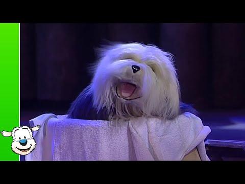 Samson & Gert Kerstshow: Iedereen is ziek (deel 10) - Wakker worden