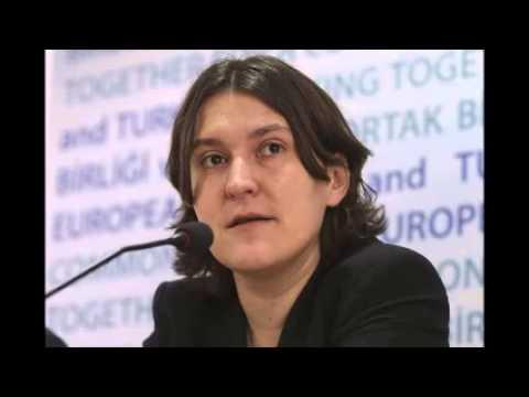 EU Rapporteur concerned over freedoms in Turkey
