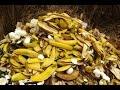 Producción De Biocombustible Orgánico - TvAgro por Juan Gonzalo Angel