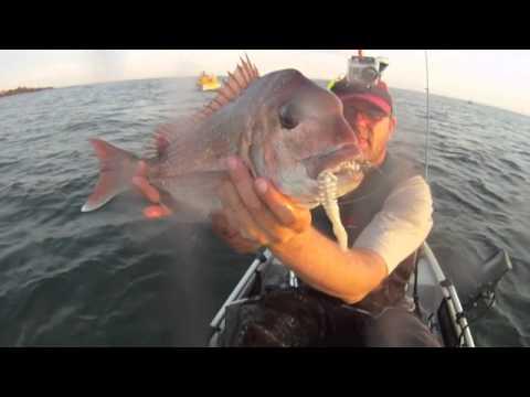 East Feast - Ricketts Part 2 - Kayak Snapper Fishing