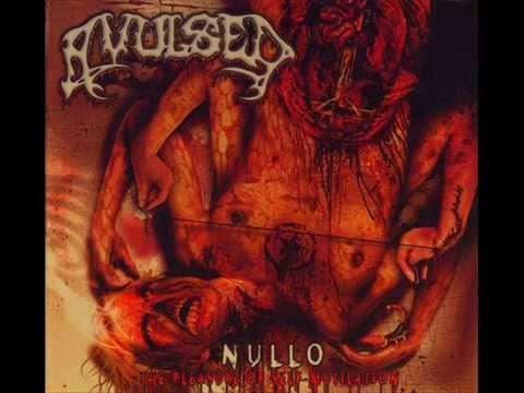 Avulsed - Penectomia