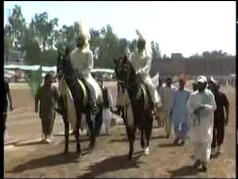 sultania awan club ( horses Nageena & mastana) 45
