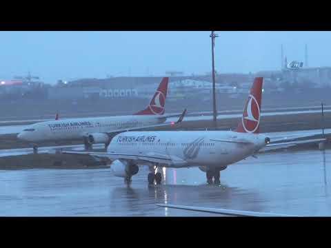 Atatürk Havalimanı'nda Üç Uçağa Kuş Çarptı