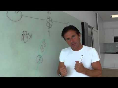 Kinderwunsch Teil 4: Embryo & Samenmorphologie