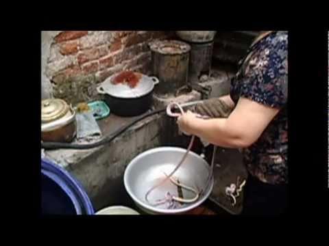 0 Snake restaurant in Vietnam