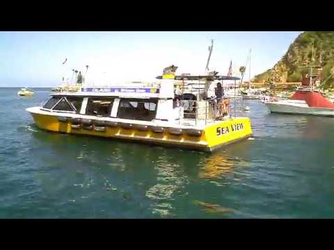 A Visit to Catalina Island
