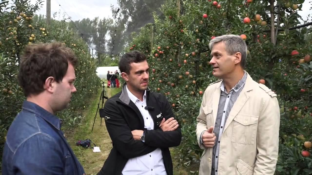uprawa borówki, nawadnianie, forum sadownicze