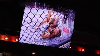 Conor McGregor vs Khabib fight