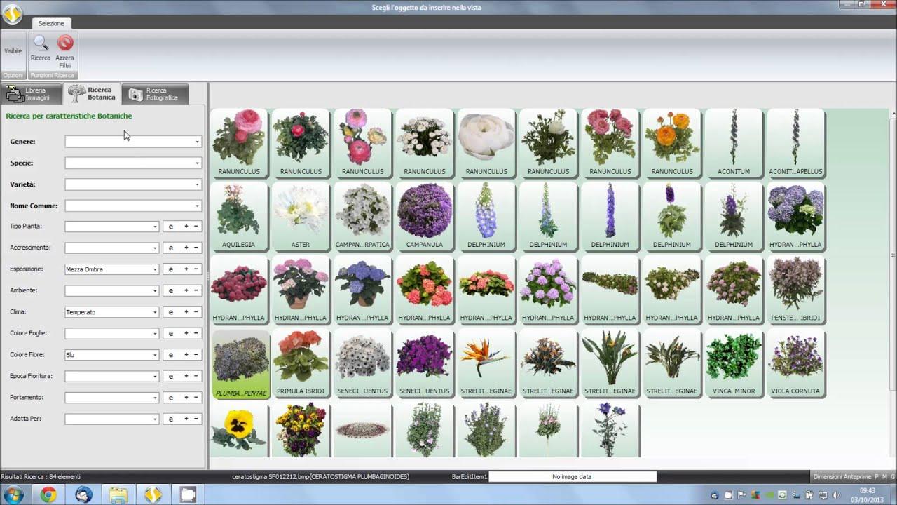 Florinfo sevis importare un dwg e stampare in scala for Progettazione giardini software