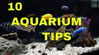 Tropical Fish: 10 Tips