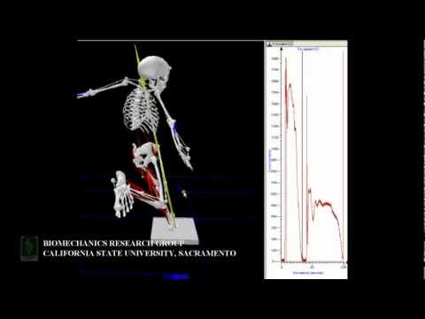3D Analysis of Football Kicking Motion - Demo Video
