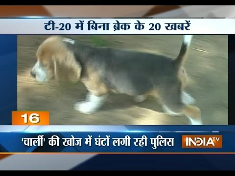 Rajasthan Minister's Missing Pet Dog Traced By Police - India Tv video