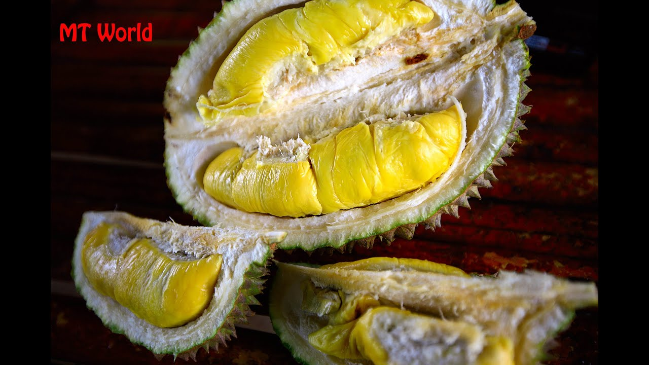 Raub Malaysia  City pictures : Raub Durian Orchard, Malaysia YouTube