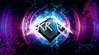 Skrillex Video - Skrillex Continuous Mix 2012 HQ