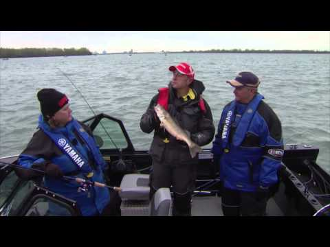 Walleye Jigging show, Detroit River, Michigan, USA