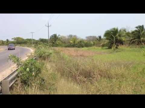 12.5-Acre Highway Frontage Northern Belize