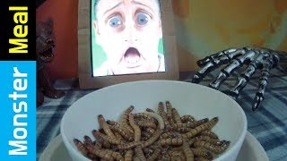 Eating A Living LARVA & WORMS | Monster Meal ASMR Sounds | Kluna Tik Style Dinner No Talk