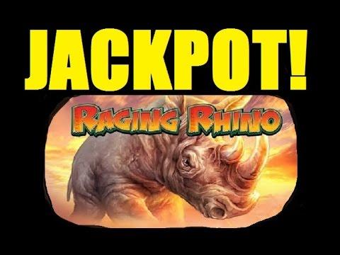 ★☆ Jackpot!! Raging Rhino Slot Machine Bonus Caught Live!! Slot Machine Bonus Huge Win! (dproxima) video