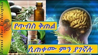 Ethiopia:-Rosemary Health Benefits