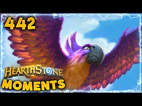 Actually Sometimes Lucky!   Hearthstone Daily Moments Ep. 442