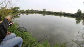 Feeder Fishing For Carp