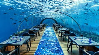 The Most Expensive Restaurant In The World