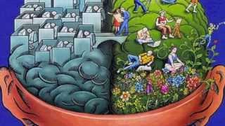 Split Brain Theory