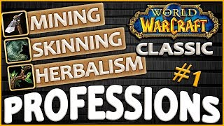 Classic Vanilla WoW Professions Overview/Guide: Skinning, Mining, Herbalism