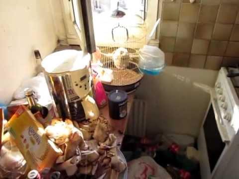 la cuisine de la porcherie crade d gueulasse sale avec des mouches merde dans l 39 vier. Black Bedroom Furniture Sets. Home Design Ideas