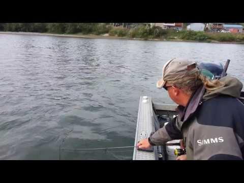 Ashwin Fishing King Salmon Cowlitz River Sep 20 2013