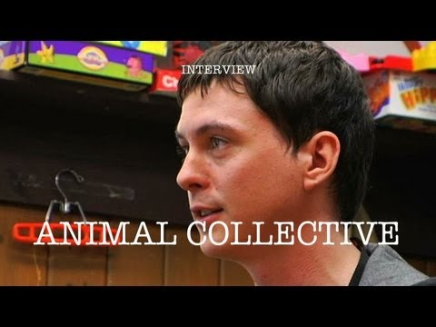 Animal Collective - Interview
