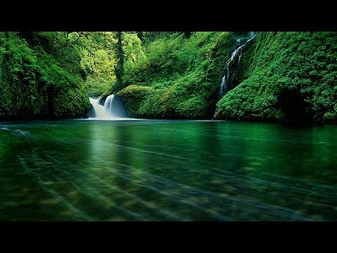 Download Relaxing Music 24/7 | Non-Stop Nature Videos | Sleep Music, Meditation Music, Study Music